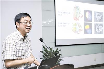 """中国""""创造""""世界首例单条染色体真核细胞"""